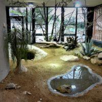 Neues Savannenhaus im Walter Zoo