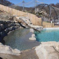 Fischotter im Zoo La Garenne