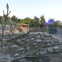 Löwenanlage und Bildungszentrum im Walter Zoo