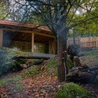 Neue Fuchsanlage im Natur- und Tierpark Goldau
