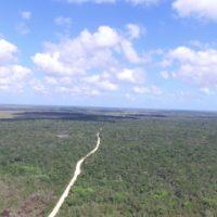 Le Papiliorama créent un corridor biologique à Belize