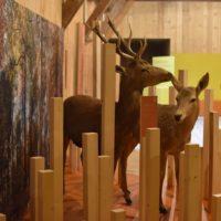 Parc naturel périurbain de Zurich: Une nouvelle exposition pour marquer l'anniversaire