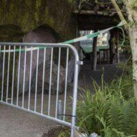 Zoo Zürich: Update an die Medienschaffenden zum tragischen Vorfall