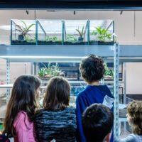 Papiliorama und Aquatis ab dem 19. April wieder geöffnet