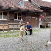 Parfums d'animaux de zoo de Bâle et de Zurich pour les chiens renifleurs des douanes